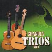 Grandes Trios, Vol. 1 by Trio Azul Marino