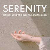 Serenity: Soft Music for Relaxation, Sleep, Study, Zen, Chill, Spa, Yoga by Various Artists