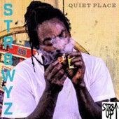 Quiet Place by Str8wyz