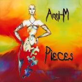 Pieces de Anti-M