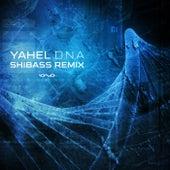 D.n.a (Shibass Remix) de Yahel