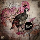 DuzzUp Vol. 9 by Various Artists