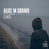 Sea of Sorrow (Live) by Alice in Chains