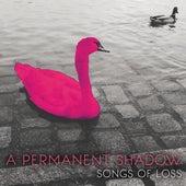Fool de A Permanent Shadow