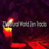 73 Natural World Zen Tracks by Asian Traditional Music