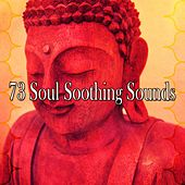73 Soul Soothing Sounds von Massage Therapy Music