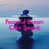 Peaceful Ocean: Calm Sounds de Ocean Sounds Collection (1)