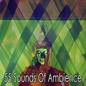 55 Sounds of Ambience de Zen Meditation and Natural White Noise and New Age Deep Massage