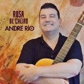 Rosa de Cheiro de André Rio