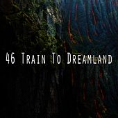 46 Train to Dreamland de Lullaby Land