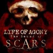 Scars von Life Of Agony