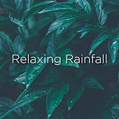 Relaxing Rainfall by Rain Sounds