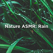 Nature Asmr: Rain by Rain Sounds