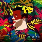 Missing You de Gringo