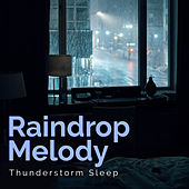 Raindrop Melody de Thunderstorm Sleep
