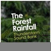 The Forest Rainfall de Thunderstorm Sound Bank