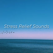 Stress Relief Sounds by Rain Sounds