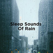 Sleep Sounds Of Rain by Rain Sounds