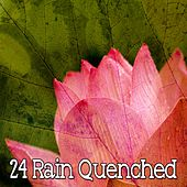 24 Rain Quenched de Thunderstorm Sleep