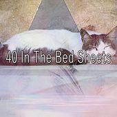 40 In the Bed Sheets by White Noise for Babies