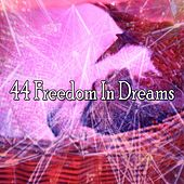 44 Freedom in Dreams de Relaxing Music Therapy