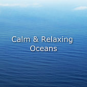 Calm & Relaxing Oceans by Ocean Sounds (1)