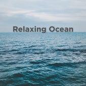 Relaxing Ocean by Ocean Sounds (1)