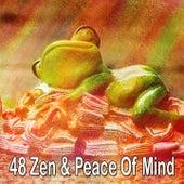 48 Zen & Peace of Mind de Smart Baby Lullaby