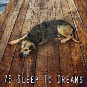 76 Sleep to Dreams de White Noise Babies