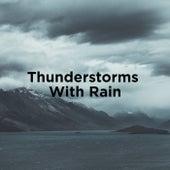 Thunderstorm Sounds With Rain de Thunderstorm Sound Bank