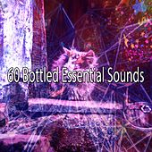 60 Bottled Essential Sounds by Spa Relaxation