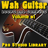 Wah Guitar -  Loops and Samples, Volume #1 by Pro Studio Library