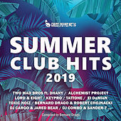 Summer Club Hits 2019 von Various