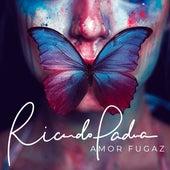 Amor Fugaz by Ricardo Padua