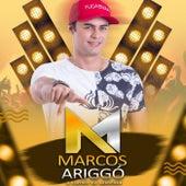 O Playboy do Arrocha de Marcos Ariggó