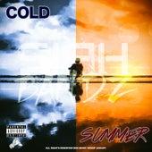 Cold Summer EP de Various
