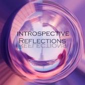 Introspective Reflections by Kokiri