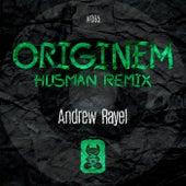 Originem (FYH 150 Anthem) [Husman Remix] von Andrew Rayel