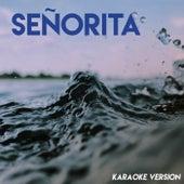 Señorita (Karaoke Version) de Vibe2Vibe