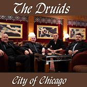 City of Chicago by The Druids