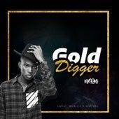 Gold Digger de Neon