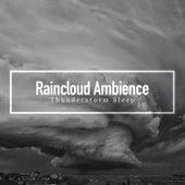 Raincloud Ambience de Thunderstorm Sleep