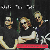 Walk the Talk by Jesse Colin Young