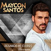 Regando as Flores de Maycon Santos