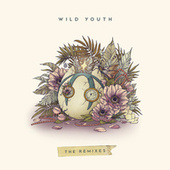 Wild Youth (The Remixes) de Dabin