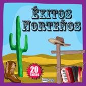 Éxitos Norteños: 20 Éxitos by Los Corraleros Del Norte