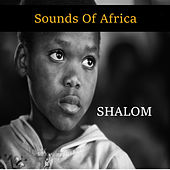 Sounds of Africa by Shalom