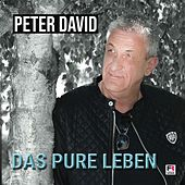 Das pure Leben von Peter David