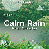 Calm Rain Noise Collection by Rain Sounds
