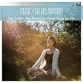 Music for Relaxation, Yoga, Meditation, Sleep, Harmony, Spa, Massage, Therapy, Zen, Calm de Various Artists